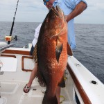 cubera_snapper_panama_big_game_fishing2