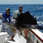 sailfish_panama_big_game_fishing4